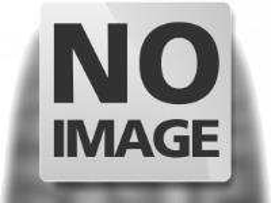 Goodride 195/60 R16 C SW 613 3PMSF M+S 0 Goodride 99/97T 97/97 6 PR